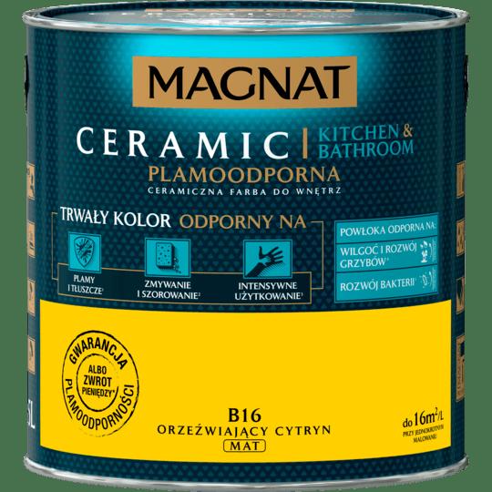 Magnat Ceramic Kitchen Bathroom fresh citrine 2,5 L
