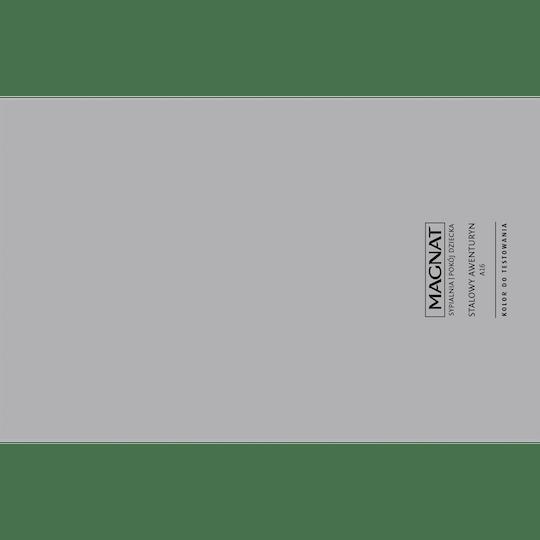 MAGNAT Ceramic Care Kolor do testowania stalowy awenturyn 1 szt