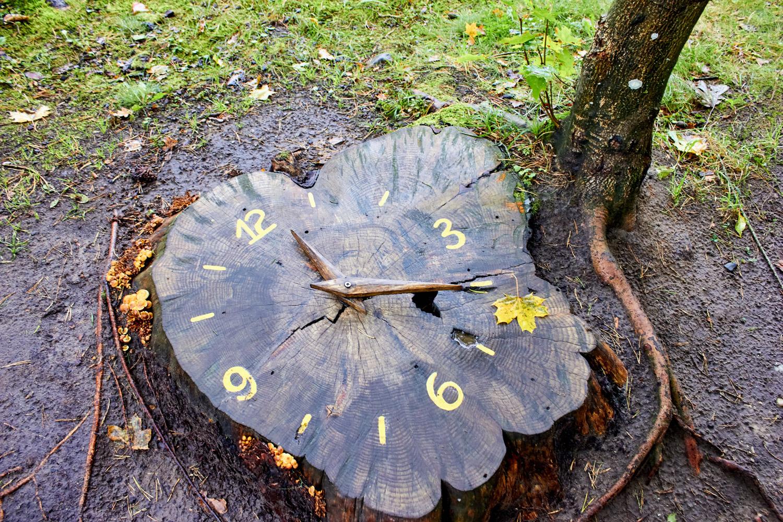 Zegar z plastra drewna DIY!